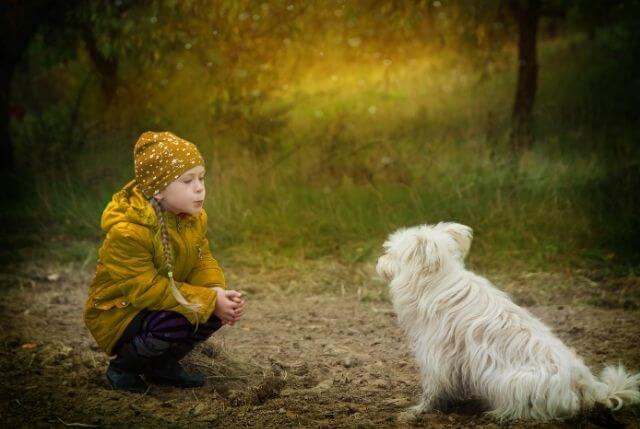 how to be kind - image of child with a dog in nature